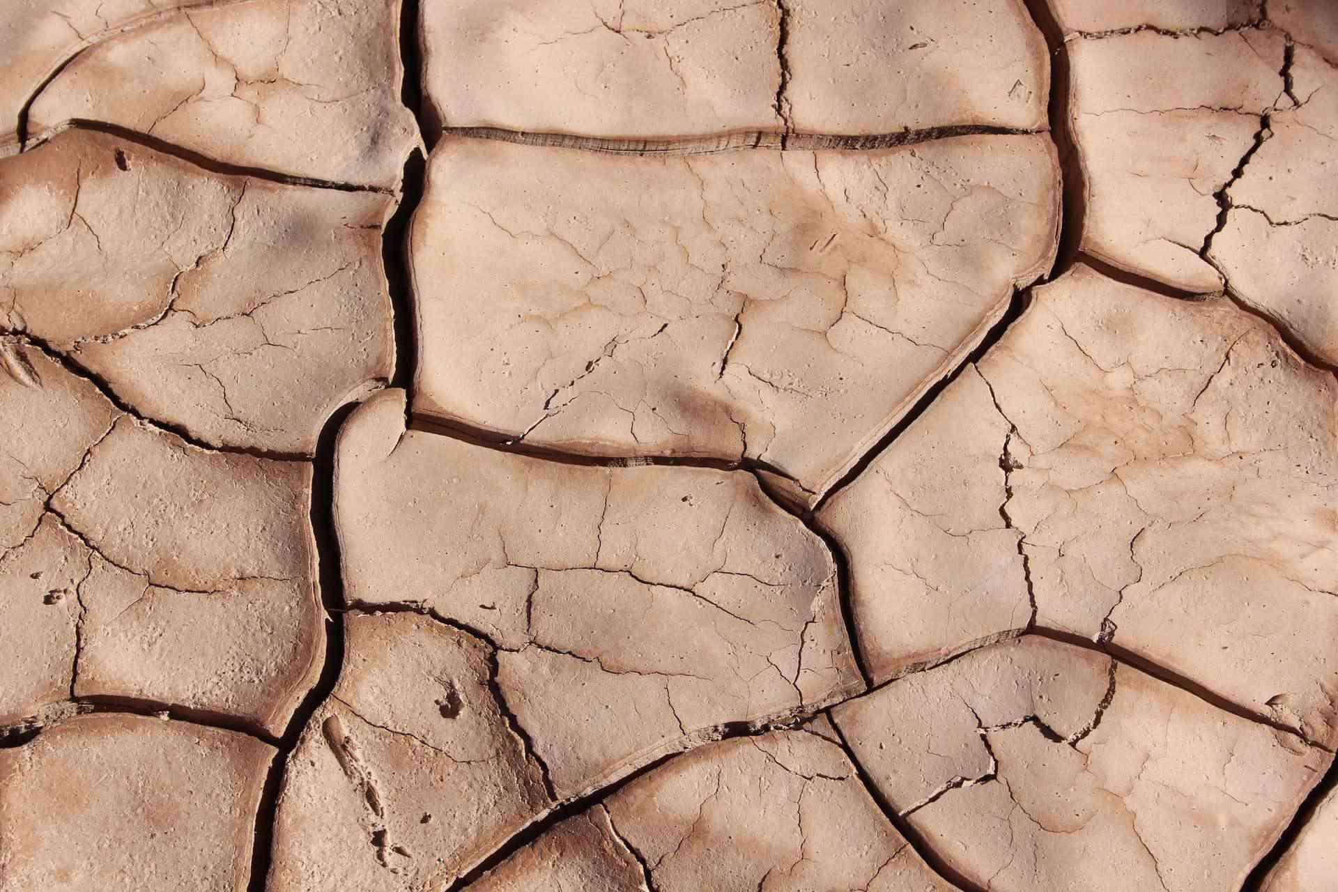 Weeping Earth, An Article By Mr Kalejaiye